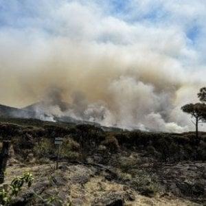 Incendi, dalla Regione piano da 30 milioni contro i roghi