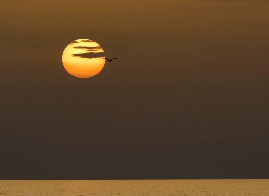 Forio e i tramonti sul mare: il reportage racconta la magia