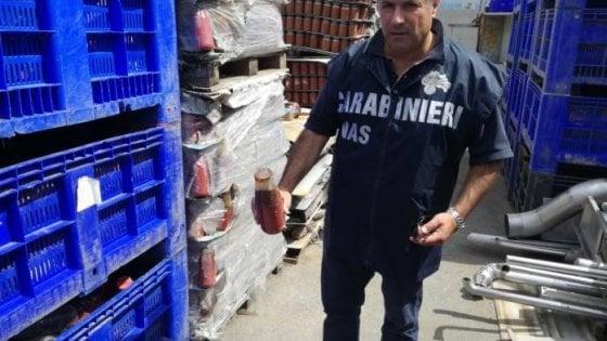 Salerno, sequestrati oltre cinquemila barattoli di pomodori per false etichette