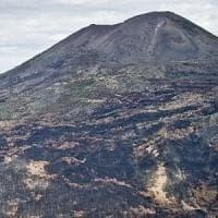 Vesuvio, il ministro all'Ambiente: 35 telecamere contro il deposito rifiuti