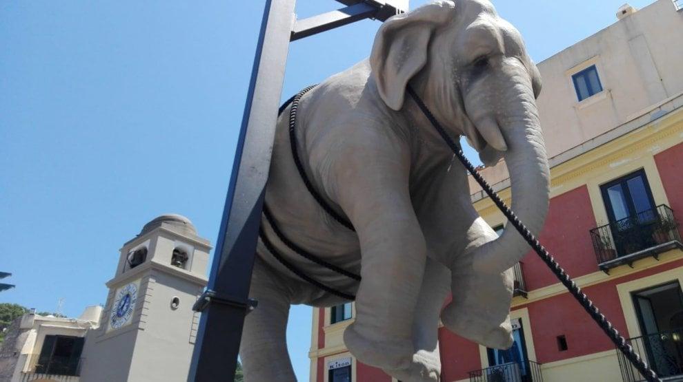 """""""Marta e l'elefante"""", mega installazione d'arte a Capri"""