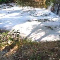 Potenza, schiuma bianca nel fiume Basento: sono acque di lavaggio di un'industria