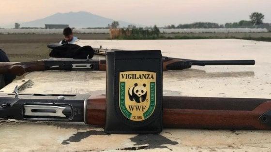 Richiami illegali per la caccia, tre denunciati e tre fucili sequestrati
