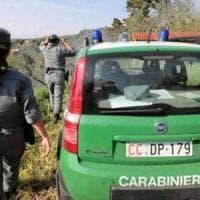Avellino, blitz carabinieri forestali: inquinamento ambientale e maltrattamento