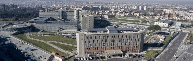 Ospedale del mare, Orabona: