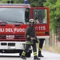 Maltempo: cade albero in Irpinia, evacuata un'abitazione
