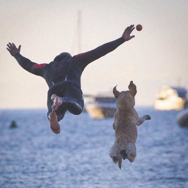 Positano, il tuffo sincronizzato di cane e padrone: lo scatto coglie l'attimo