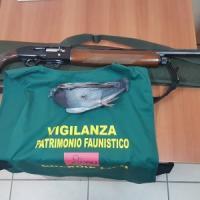 Cacciatori sparano a storni e colombi, blitz dei carabinieri forestali