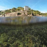 Ischia, la fine di Aenaria per un'eruzione o un terremoto? Esperti a confronto
