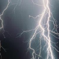 Maltempo: fulmine colpisce pino secolare a Ravello