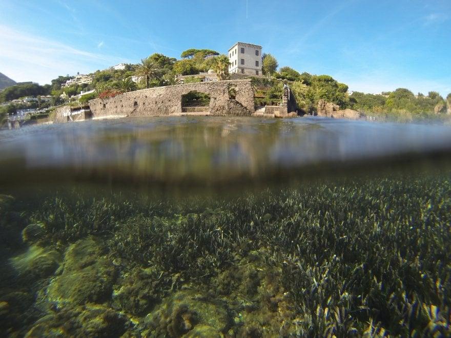 Aenaria, il mare di Ischia restituisce un ago di duemila anni