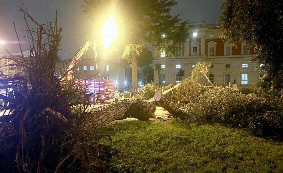 Maltempo a Napoli alberi e pali della luce caduti al centro strada davanti al Cardarelli, sfiorata la tragedia