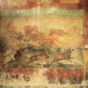 Pompei, riaprono la Casa dei Ceii e il complesso di Giulia Felice
