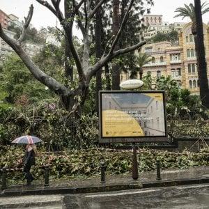 Emergenza alberi pericolanti, chiusi i grandi parchi cittadini