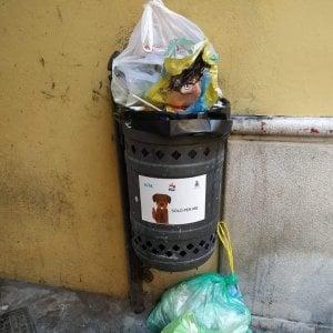Potenza, cestini per i bisogni dei cani usati come raccoglitori di rifiuti