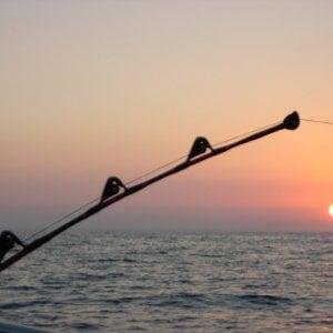 Med Cooking, focus sulla pesca per la tutela del mare