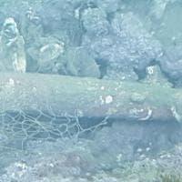 Ripuliti i fondali della fondali penisola sorrentina, tra i rifiuti spunta anche un ordigno della Seconda Guerra Mondiale