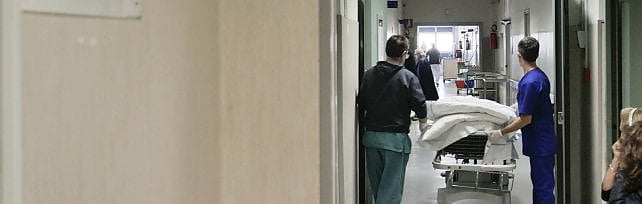 Donna sommersa dalle formiche in un ospedale a Napoli, la ministra Grillo: