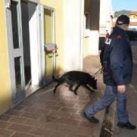 Potenza, droghe e minori: controlli della polizia nella villa di Santa Maria