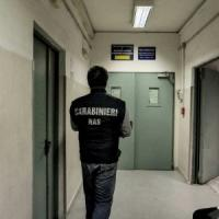 Sommersa da formiche: nuova ispezione in ospedale a Napoli