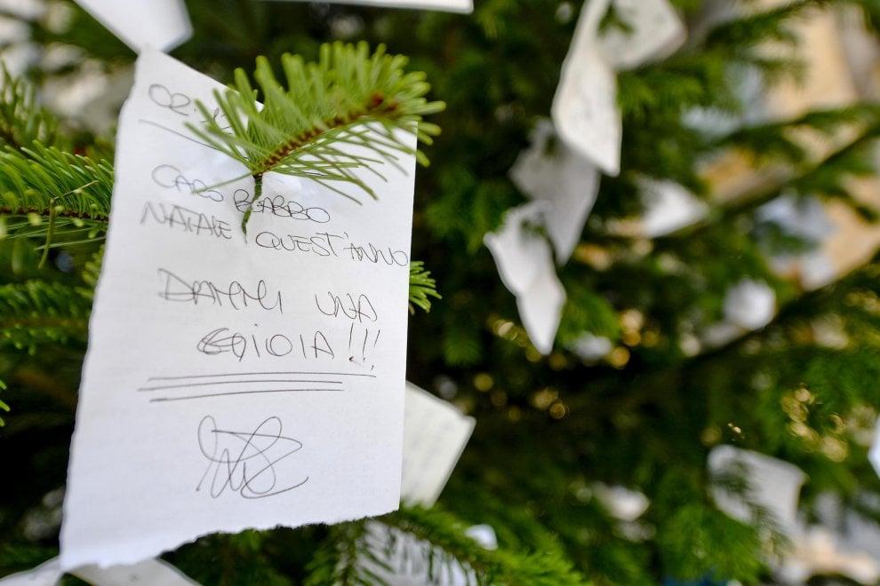 """Albero di Natale e messaggi in galleria a Napoli: """"Dammi una gioia"""""""