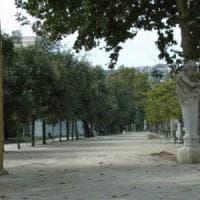 Napoli, allerta per il forte vento: parchi cittadini chiusi in via precauzionale