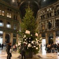 """Galleria Umberto, torna l'albero. I commercianti: """"Vigiliamo da soli"""""""