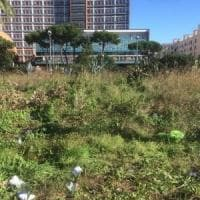 Ambiente, cittadini in azione: domenica la pulizia di piazzale Tecchio a Fuorigrotta
