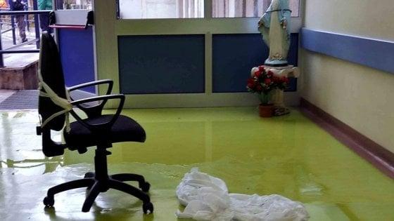 """Formiche in ospedale, direttore Asl di Napoli 1: """"Sabotaggio condotte"""""""