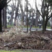 Crolli, rifiuti e degrado: la riapertura flop del parco Virgiliano