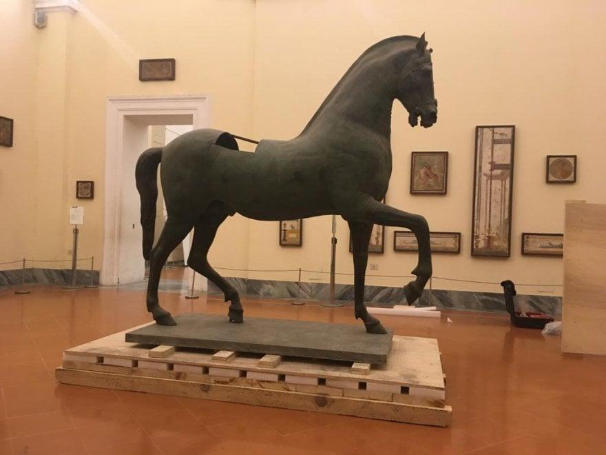 Sorpresa al Mann: torna visibile il cavallo di Caligola da Pompei, sarà restaurato en plein air