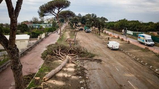 I Luoghi del Cuore Fai, in Campania 200mila voti. Il Parco Virgiliano di Napoli al 9° posto in classifica