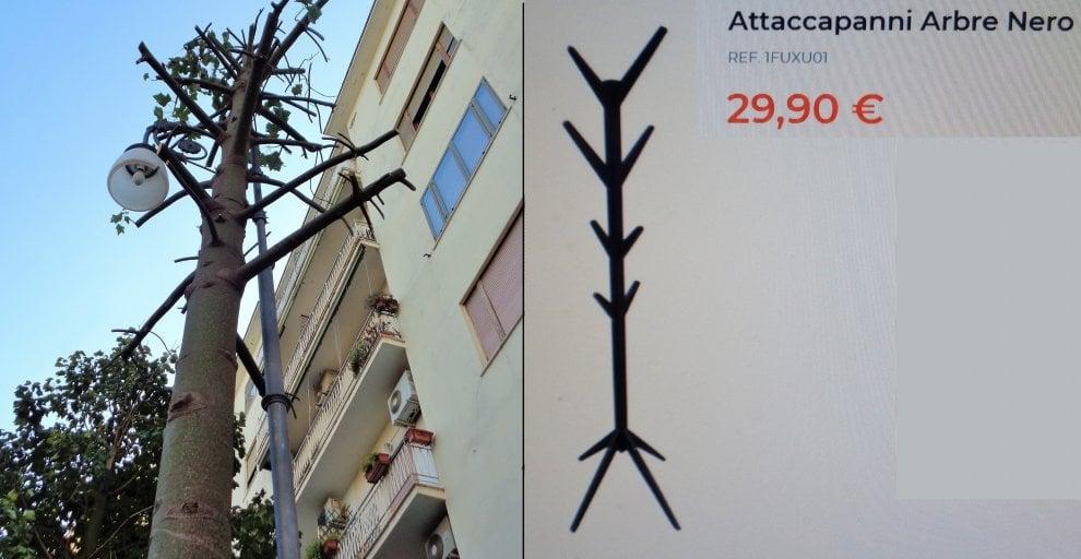 Albero Attaccapanni.Sorrento L Albero Potato E Come L Attaccapanni Ikea Il Wwf