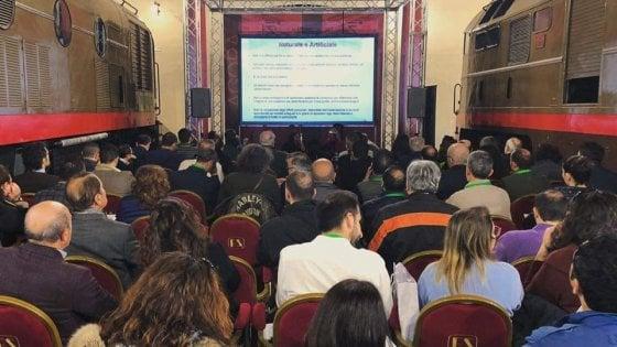 Sicurezza degli alimenti all'Innovation Village: un convegno dell'Ordine Regionale dei Chimici e dei Fisici della Campania