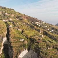 Vinitaly, è di Ischia la miglior cantina d'Italia: premiata la viticoltura eroica di Mazzella