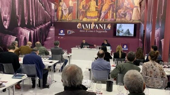 Vinitaly 2019, riflessioni e premi che raccontano la Campania del vino