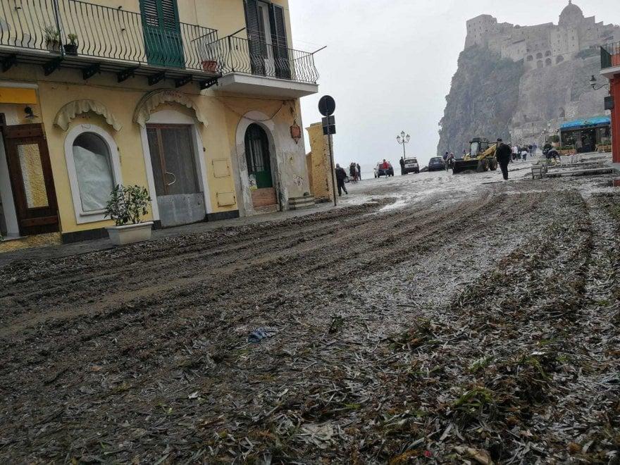 Ischia, dopo la mareggiata strade invase dalla posidonia