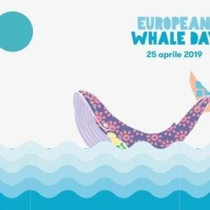 European Whale Day, a Bacoli inno ai cetacei del Tirreno
