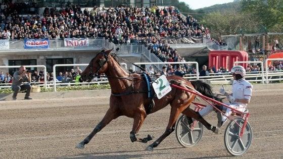 Ippica, Lotteria di Agnano: vince la stella francese Bel Avis
