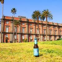 Birra e Napoli, il tour tra centro e periferia
