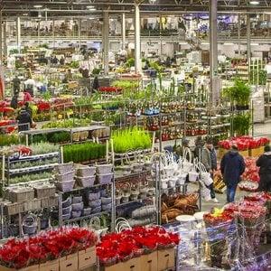 Castellammare, estorsioni al mercato dei fiori: blitz contro il clan Cesarano, 7 arresti