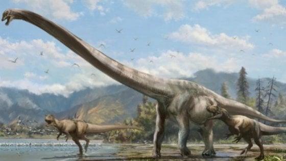 L'Italia è emersa prima ed era fatta di isole tropicali, congresso di paleontologia a Benevento