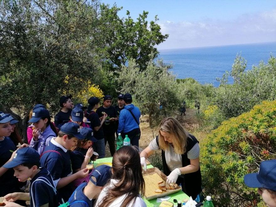 Anacapri, pane e olio a merenda per scoprire l'oro verde