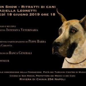 """Napoli, arriva """"Best in show"""": gara di bellezza dei cani di 'sangue blu'"""