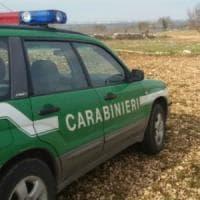 Terra dei fuochi, sequestrati nel Casertano terreni