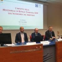 Studio Svimez: la Mozzarella di Bufala Campana DOP corre come un brand auto:  vale 1,2 miliardi
