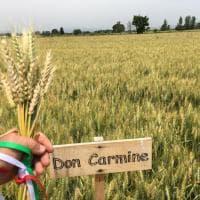 Capodanno del Mugnaio, appuntamento il 27 giugno a Frignano