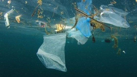 Costiera Amalfitana,  guerra alla plastica con la start up campana Little Hunter