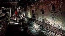 Visite serali negli scavi    di Ercolano e a Carditello