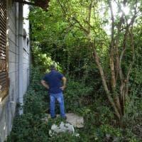 """Napoli, i giardinieri nella scuola-giungla:  """"Ma per pulire ci vogliono le ruspe"""""""